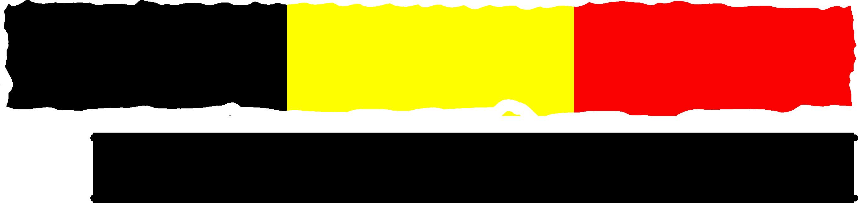 Afbeeldingsresultaat voor axs guard